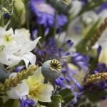Wildflowers detail
